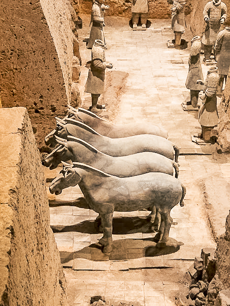 Terracotta Horses in one of the excavated pits that you can see when visiting the Terracotta Warriors