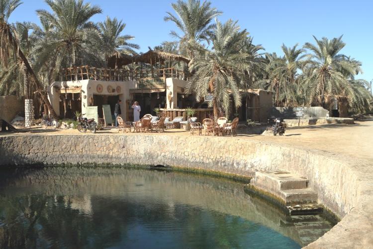 Oasis Pool Siwa