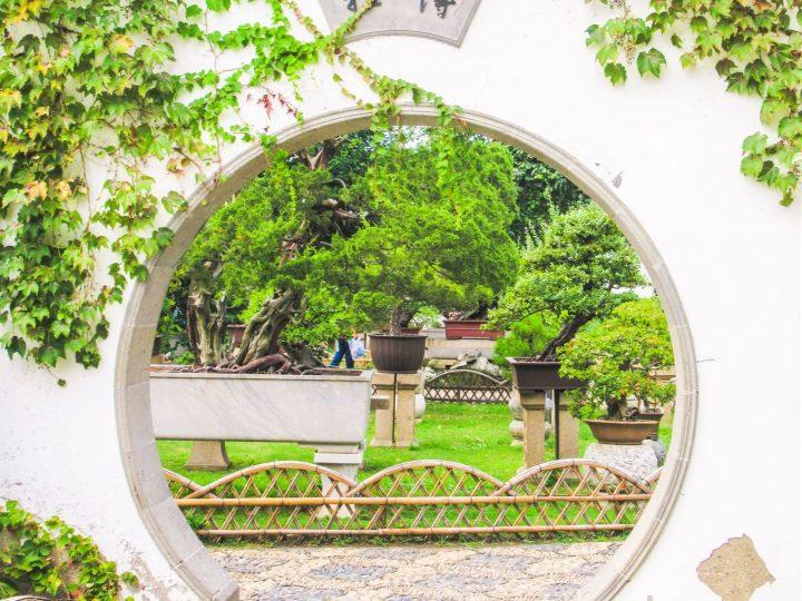 Stunning Suzhou Garden Photos to Inspire Your Trip!
