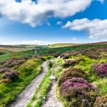 Top Withens, deep in Bronte Country