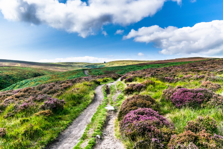 Top Withens in Bronte Country