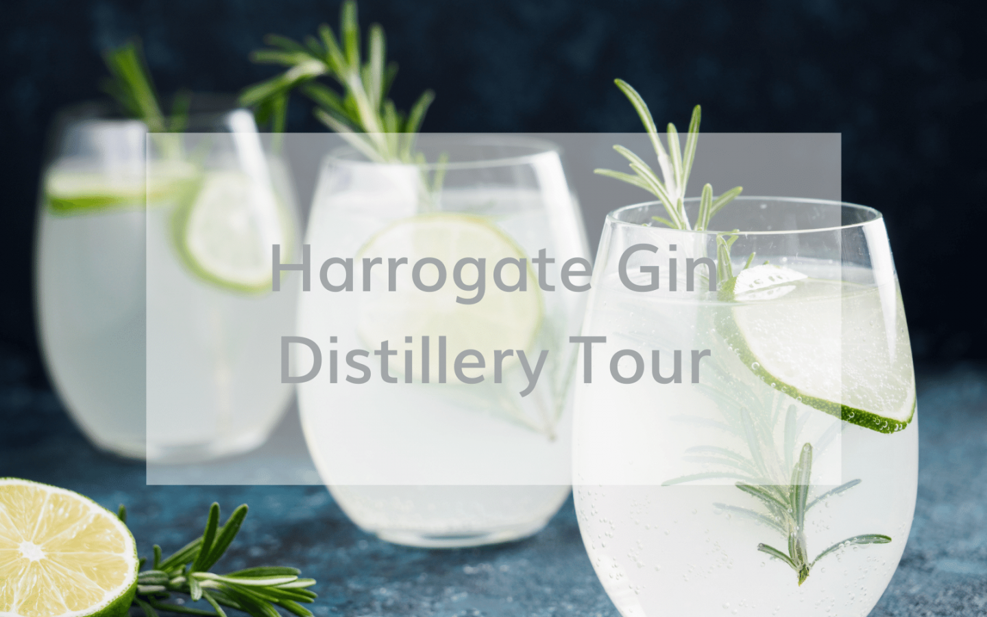 Harrogate gin distillery tour review