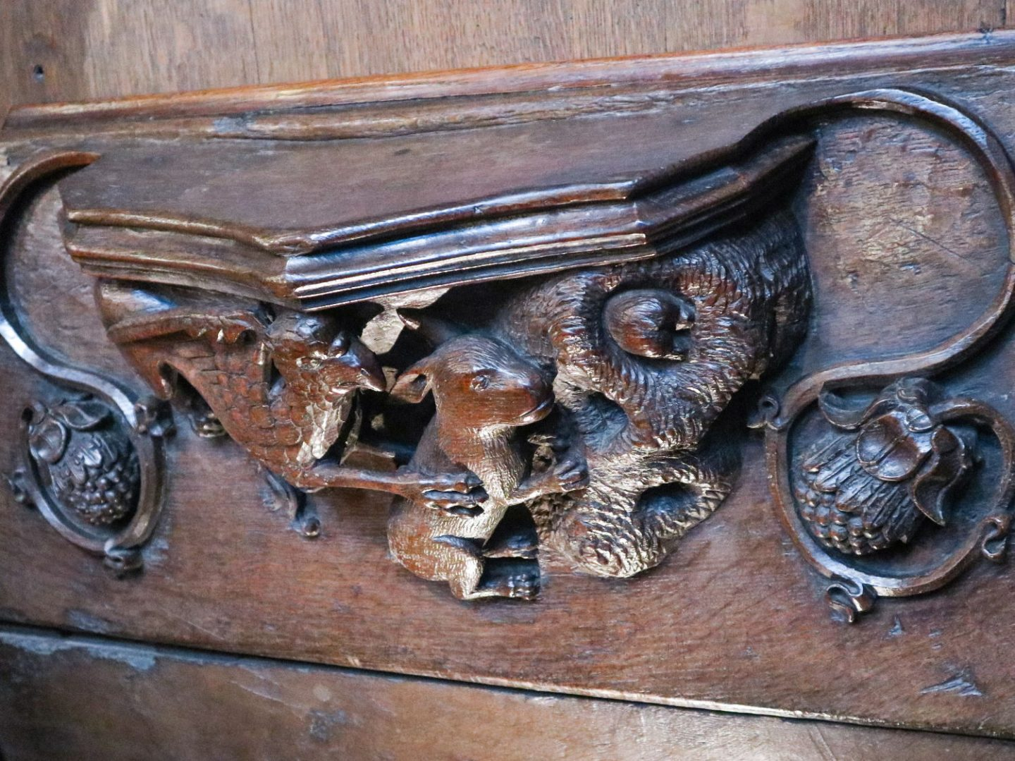 One of the beautifully carved misericords in the choir