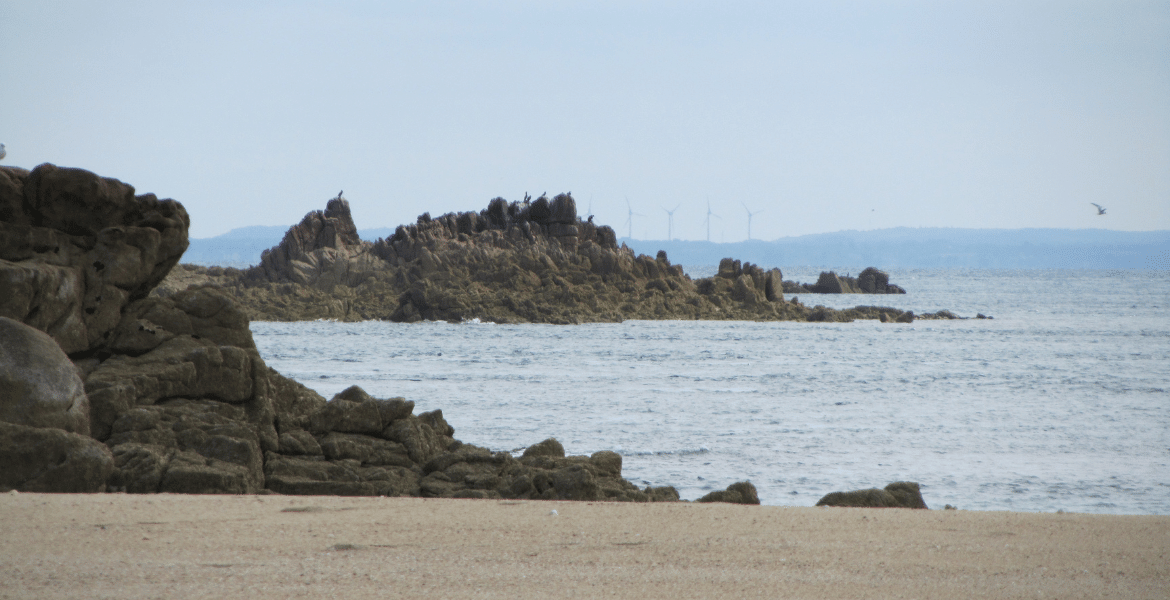 Wind turbines on the French coast, visible from Les Ecrehous