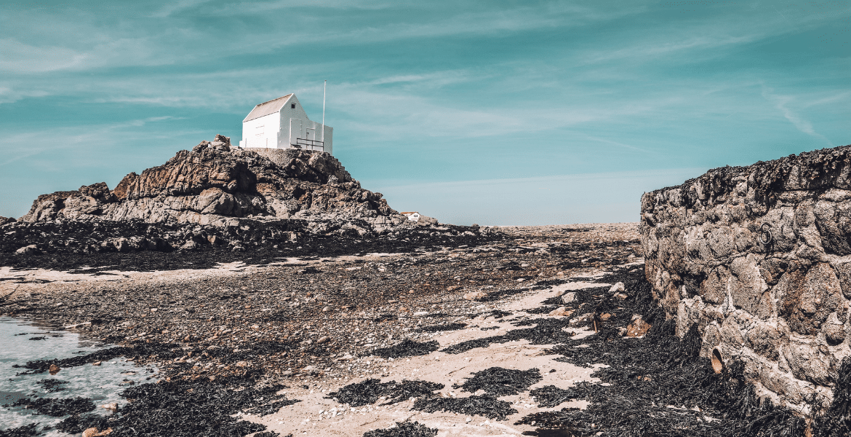 Visit the islet of La Marmotchiéthe on a RIB trip to Les Ecrehous
